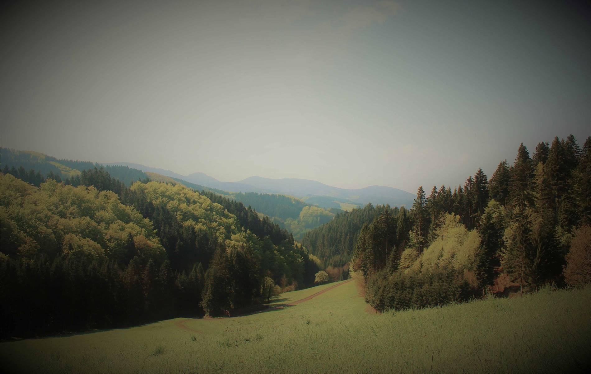 Blog schwarzwaldlieb
