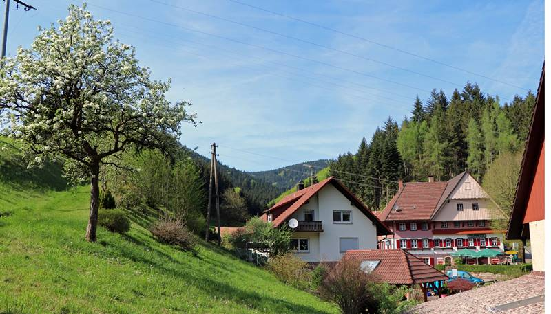 sieben-taelerweg-oberharmersbach