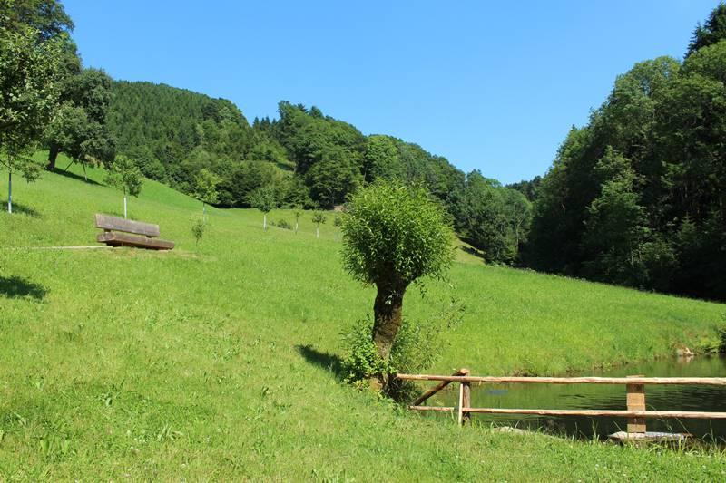 forellenteich-hinterbauernhof-oberharmersbach