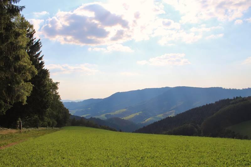 kreuzweg-oberharmersbach