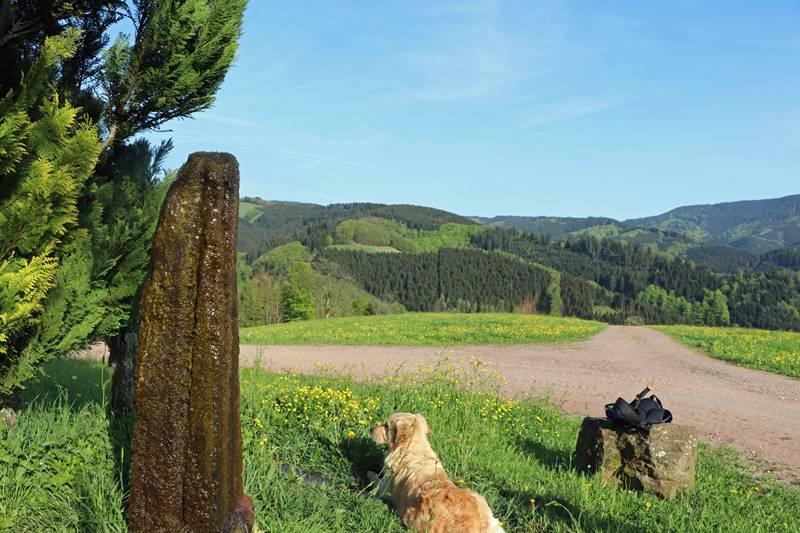 brunnen-sieben-taeler-weg-oberharmersbach