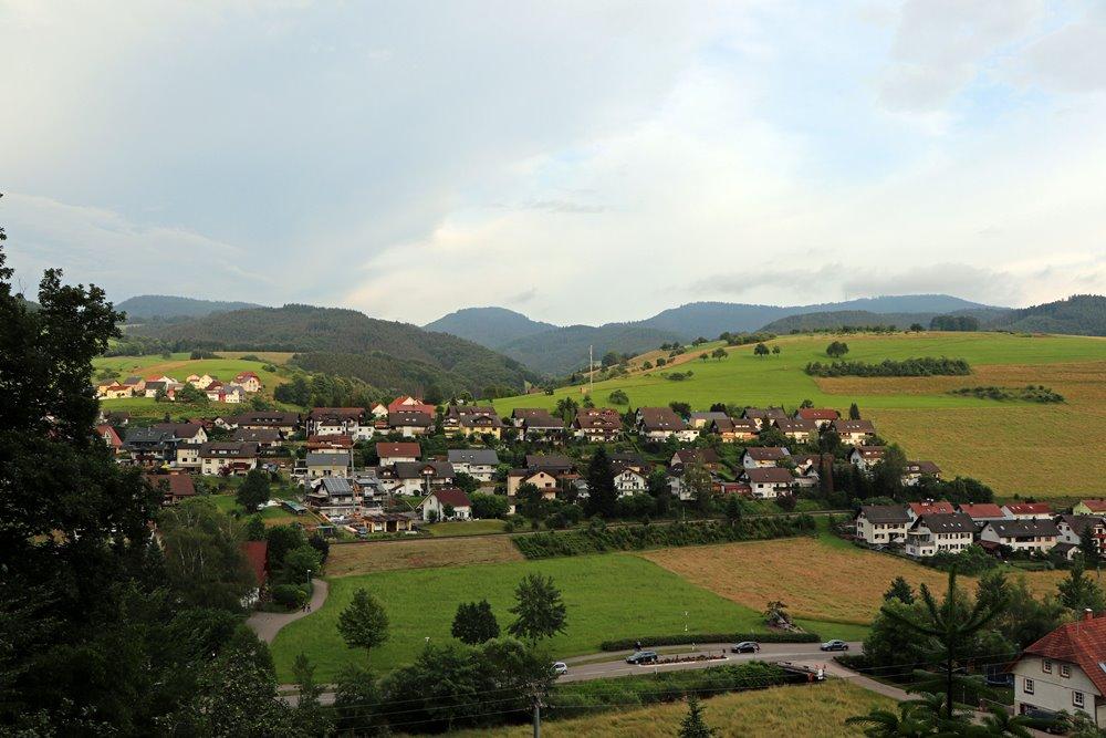 kraeuterwanderung-mit-micha-oberharmersbach