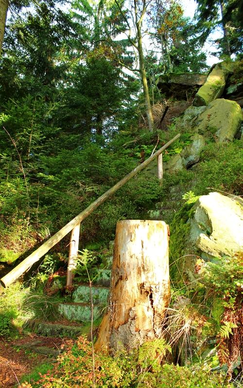 treppe-im-wald-heidenstein-oberharmersbach