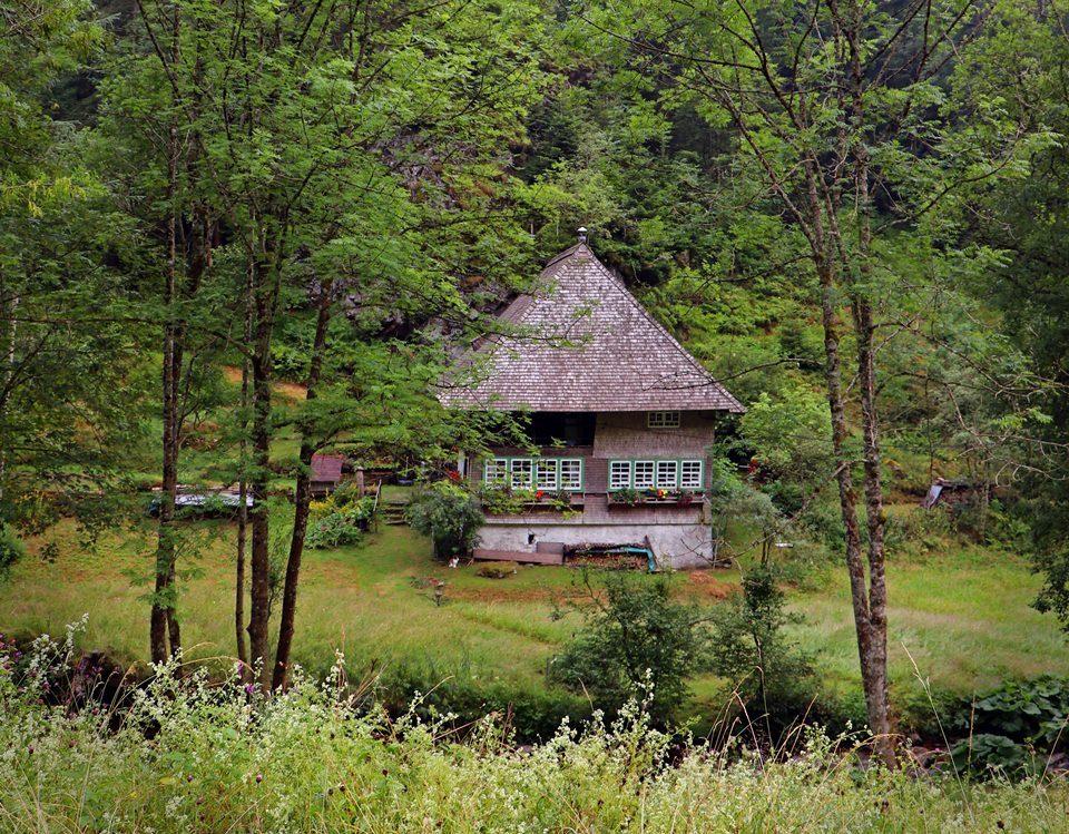 schwarzwald-regen-schwarzwaldhaus