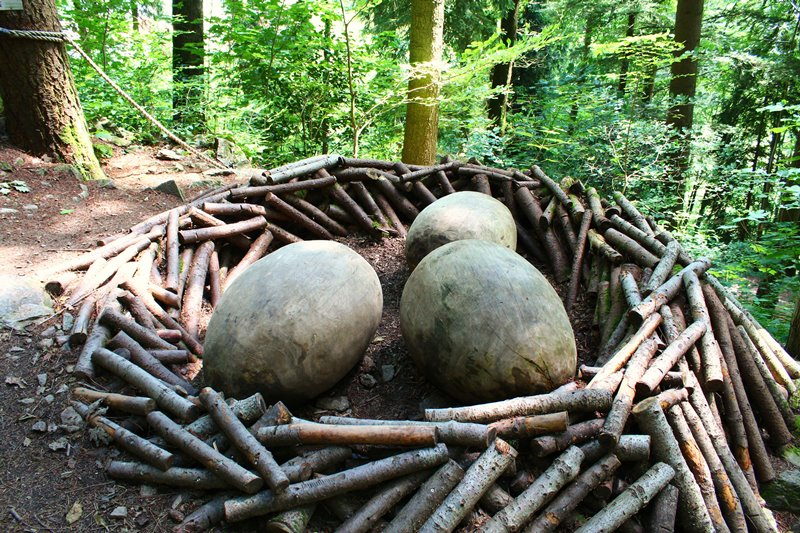 nest-mit-rieseneier-oberharmersbach