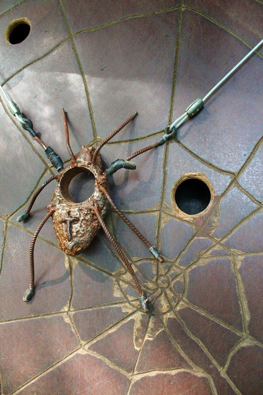 spinnen-im-wald-oberharmersbach