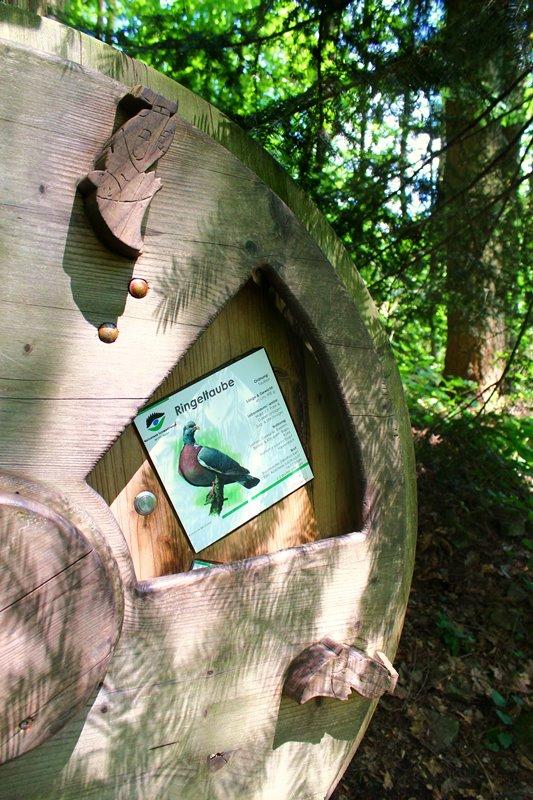 vogelstimmenrad-naturerlebnis-oberharmersbach