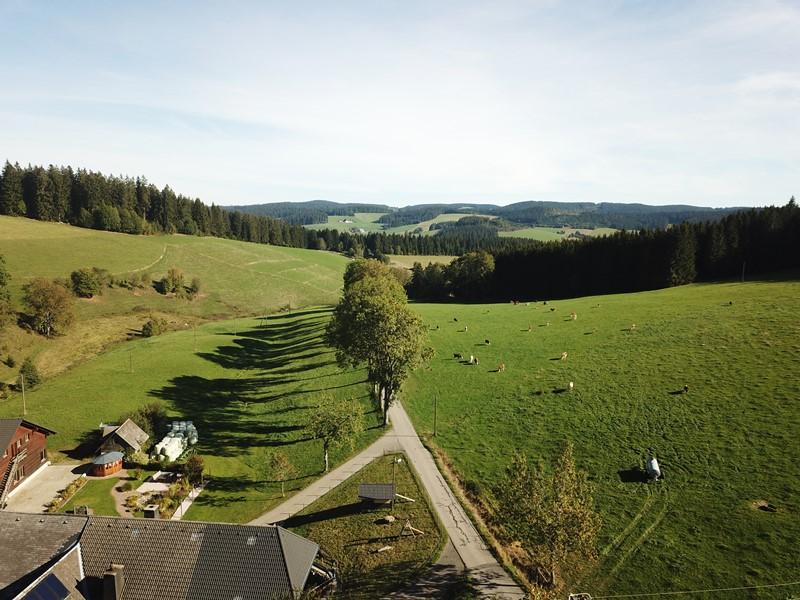 hochschwarzwald-lippenhof-drohnenbild