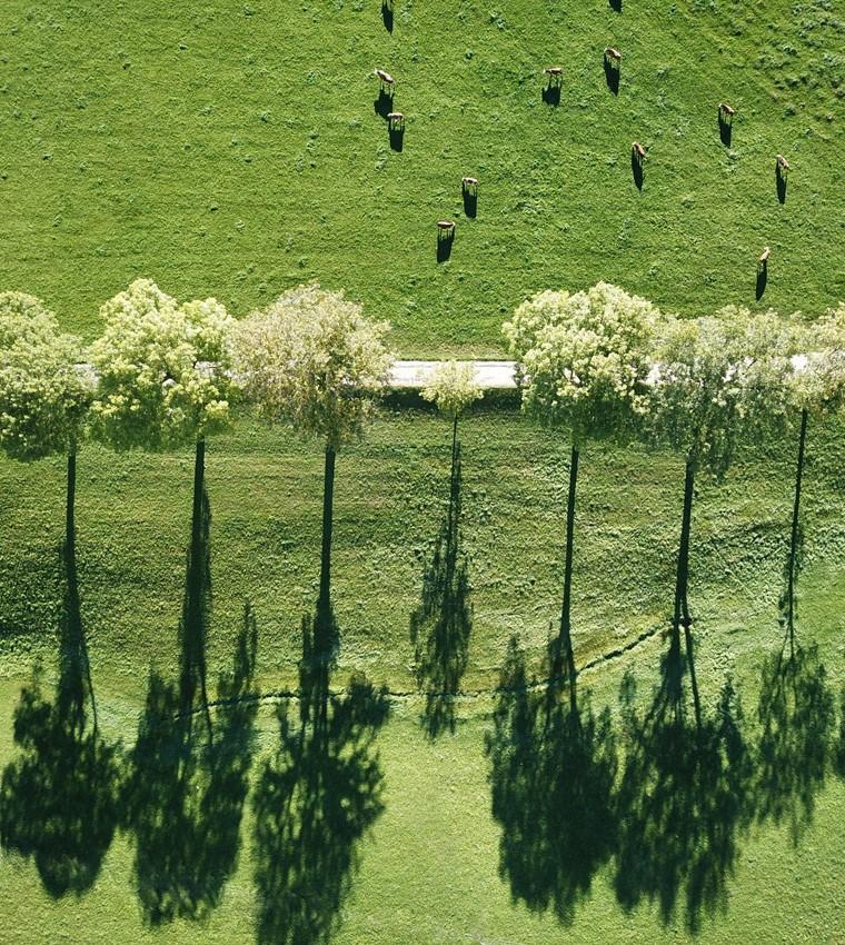 lippenhof-orte-schwarzwaldlieb