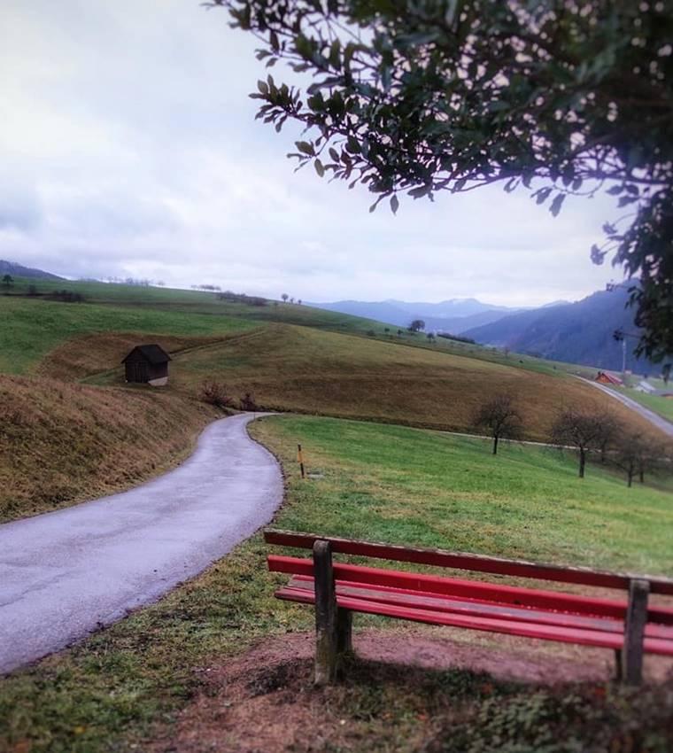 schwarzwaldlieb-weg-ins-tal