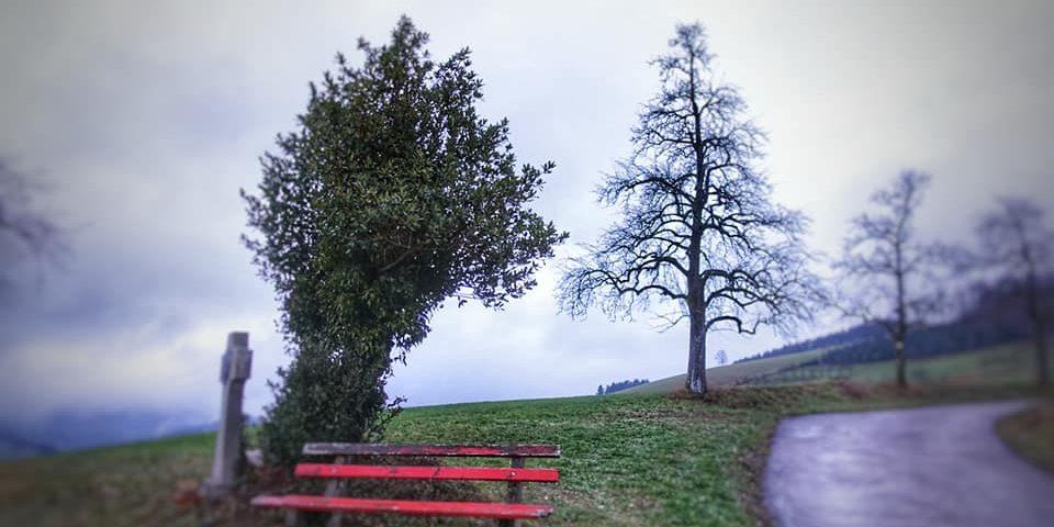 fussbuehl-oberharmersbach