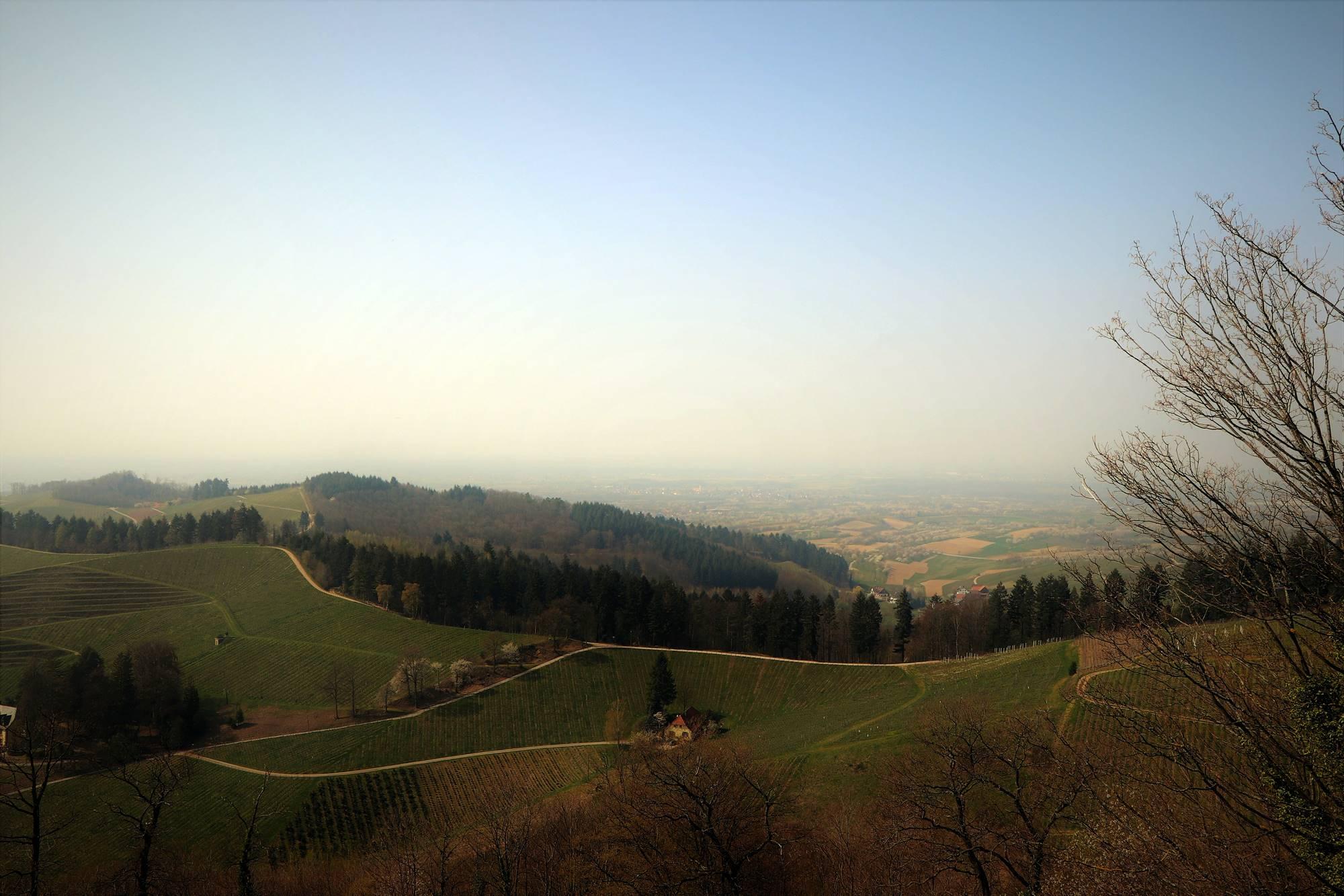 blick-nach-offenburg-staufenberg