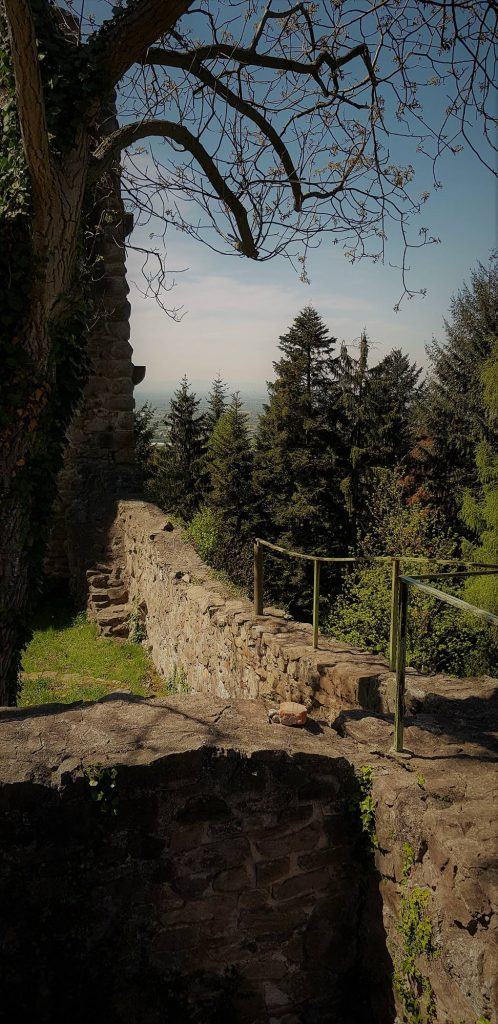 innenhof-ruine-schauenburg