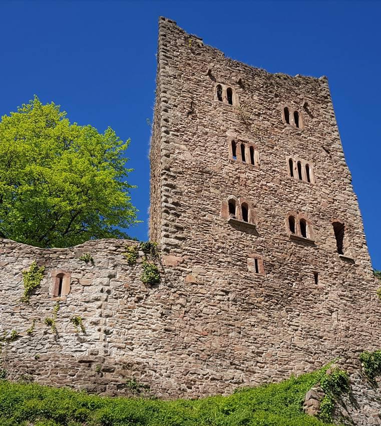 Ruine Schauenburg von unten Titelbild