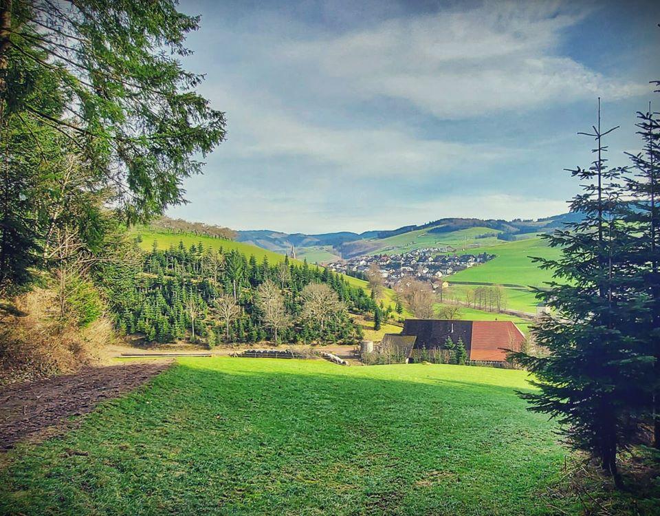 Blick vom Reichstalfpfad auf Oberharmersbach-Dorf